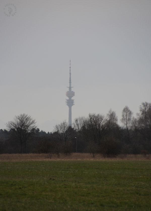 frühling (3a)